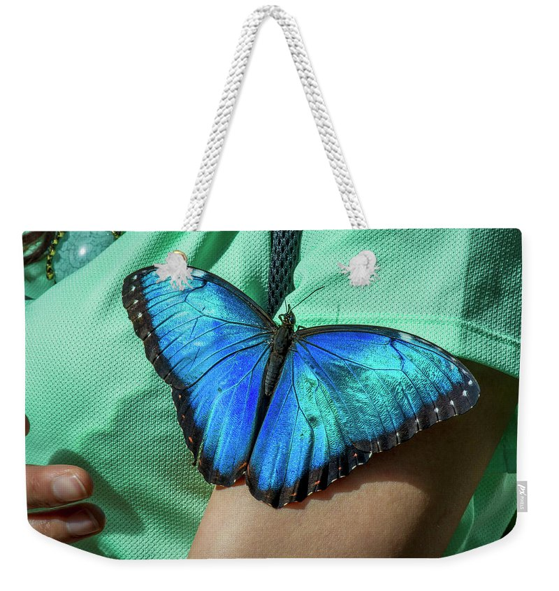 Florida Weekender Tote Bag featuring the photograph 5113- Butterfly by David Lange