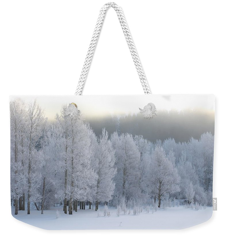 Winter Weekender Tote Bag featuring the photograph A Frosty Morning by DeeLon Merritt