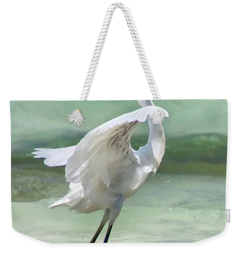 Egret Weekender Tote Bag featuring the photograph A Snowy Egret (egretta Thula) At Mahoe by John Edwards