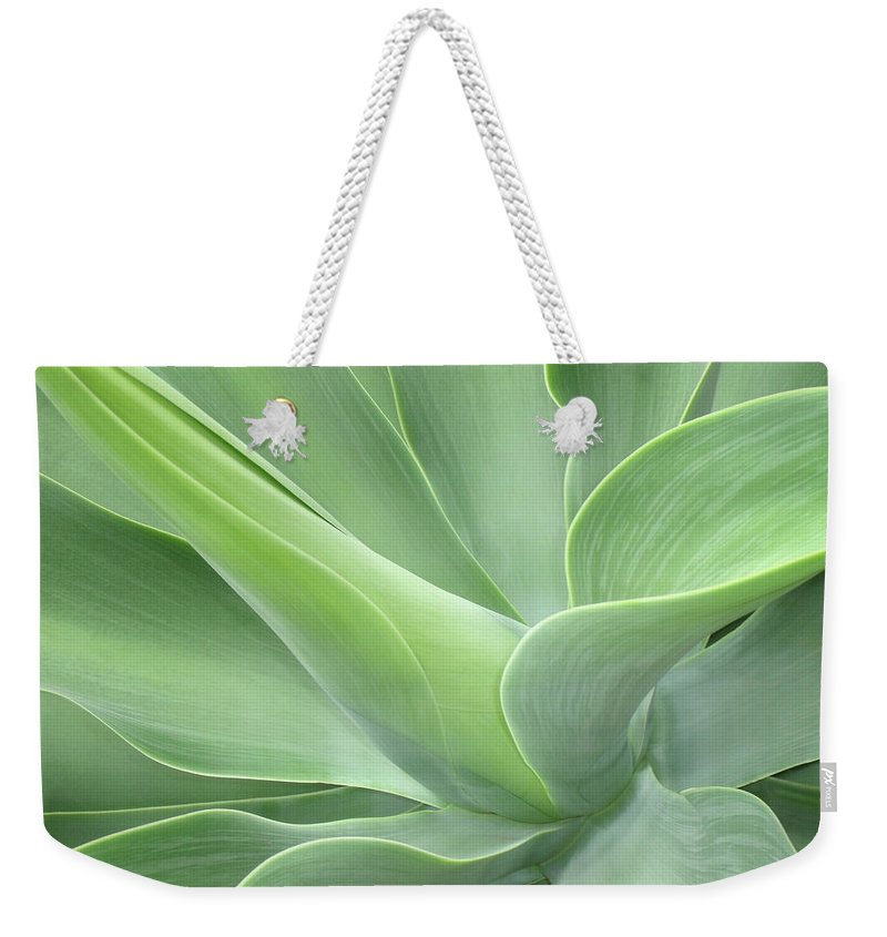 Agave Weekender Tote Bag featuring the photograph Agave Attenuata Abstract by Bel Menpes