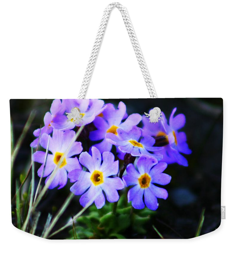 Flowers Weekender Tote Bag featuring the photograph Alaskan Wild Flowers by Anthony Jones