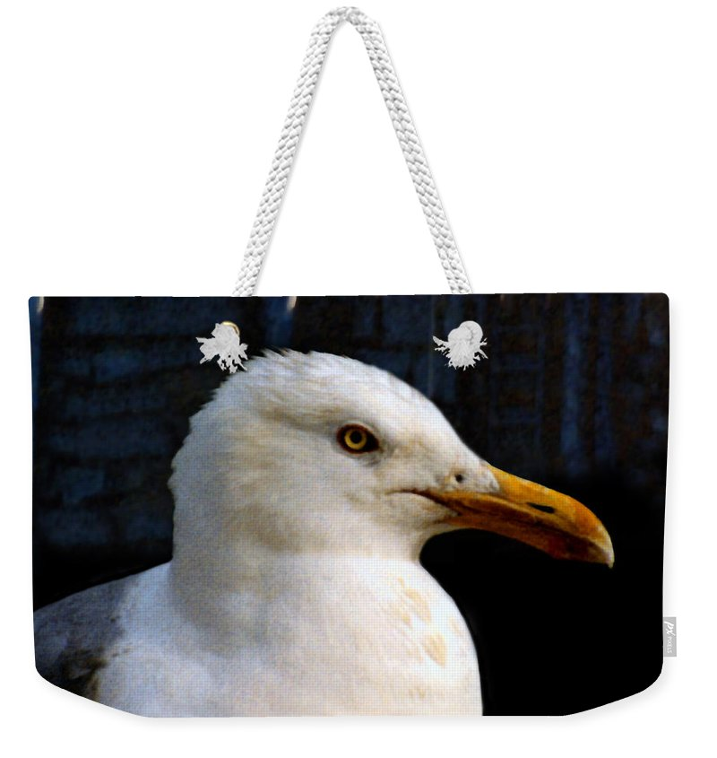 Seagull Weekender Tote Bag featuring the painting Alpha Gull by Paul Sachtleben