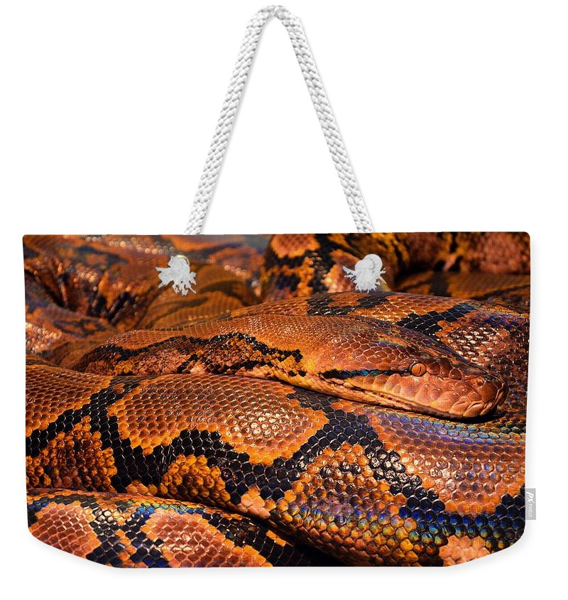 Snake Weekender Tote Bag featuring the digital art Anaconda by FL collection