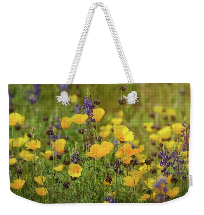 Poppies Weekender Tote Bag featuring the photograph Arizona Wildflowers by Saija Lehtonen
