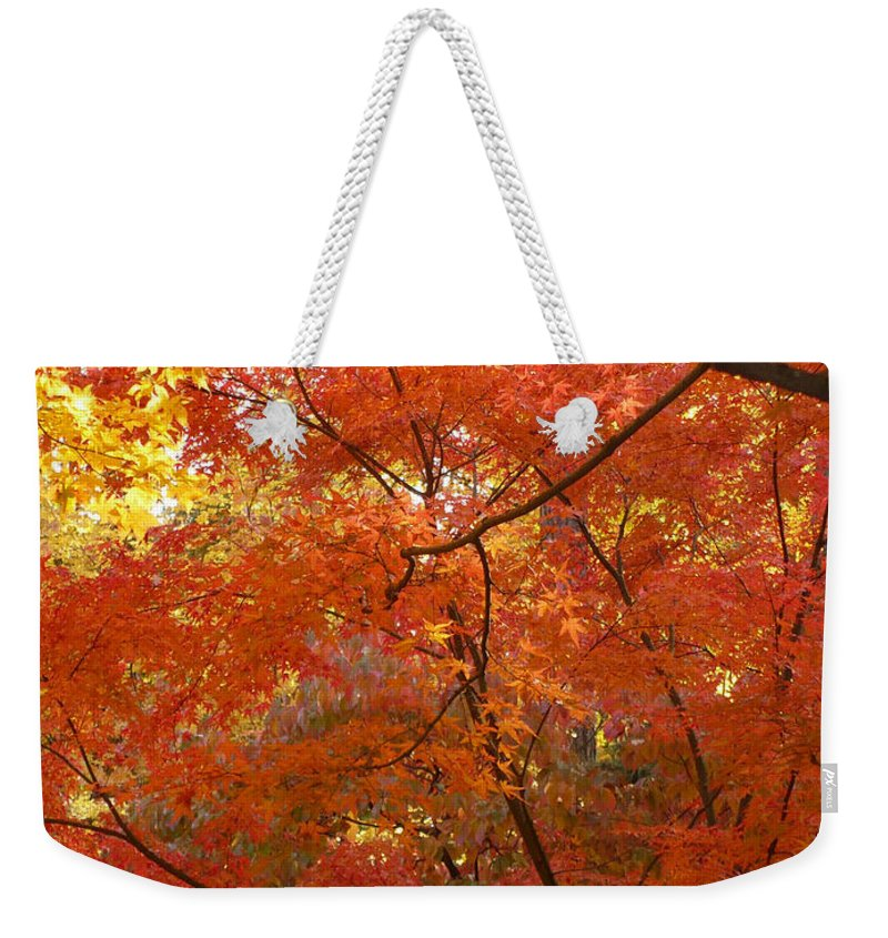 Autumn Weekender Tote Bag featuring the photograph Autumn Gold by Carol Groenen