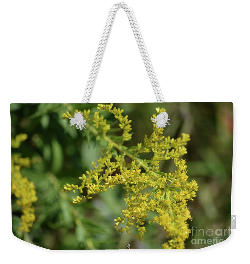 Autumn Goldenrod Prints Weekender Tote Bag featuring the photograph Autumn Goldenrod by Ruth Housley