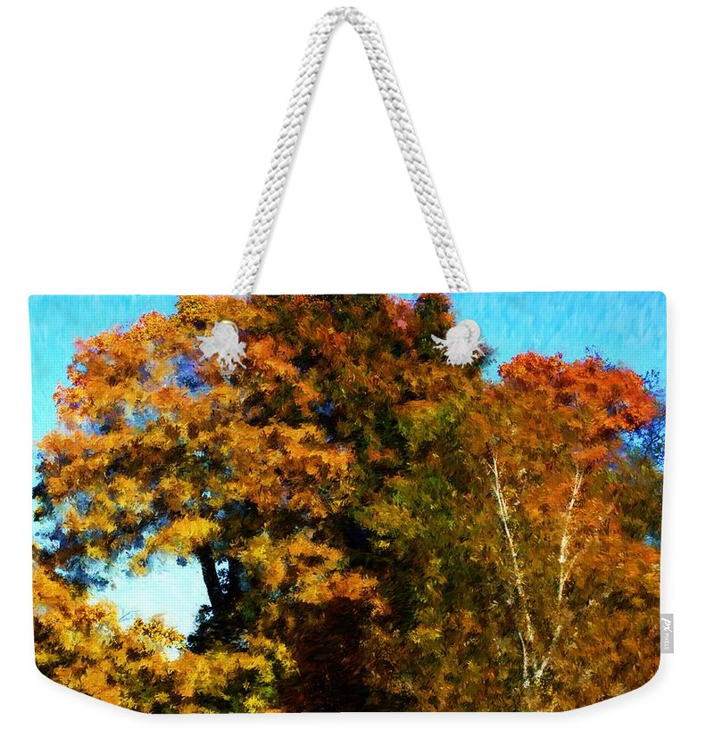 Digital Photography Weekender Tote Bag featuring the photograph Autumn Leaves by David Lane