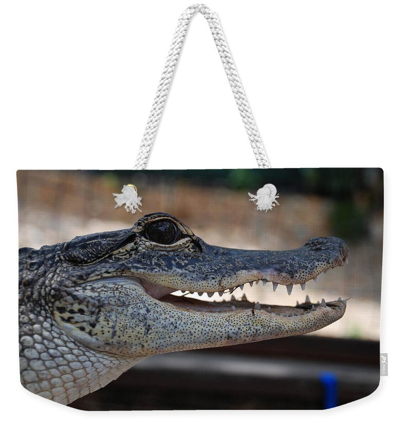 Macro Weekender Tote Bag featuring the photograph Baby Gator by Rob Hans