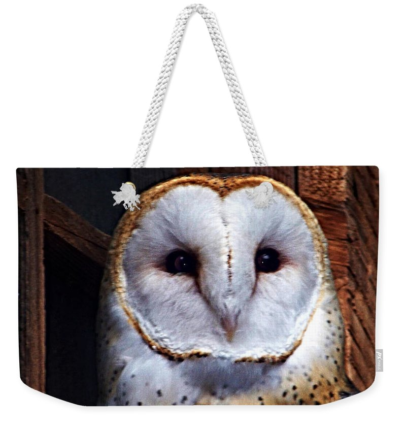 Digital Painting Weekender Tote Bag featuring the photograph Barn Owl by Anthony Jones
