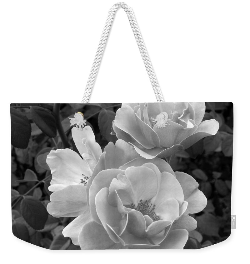 Rose Weekender Tote Bag featuring the photograph Black And White Roses 2 by Amy Fose