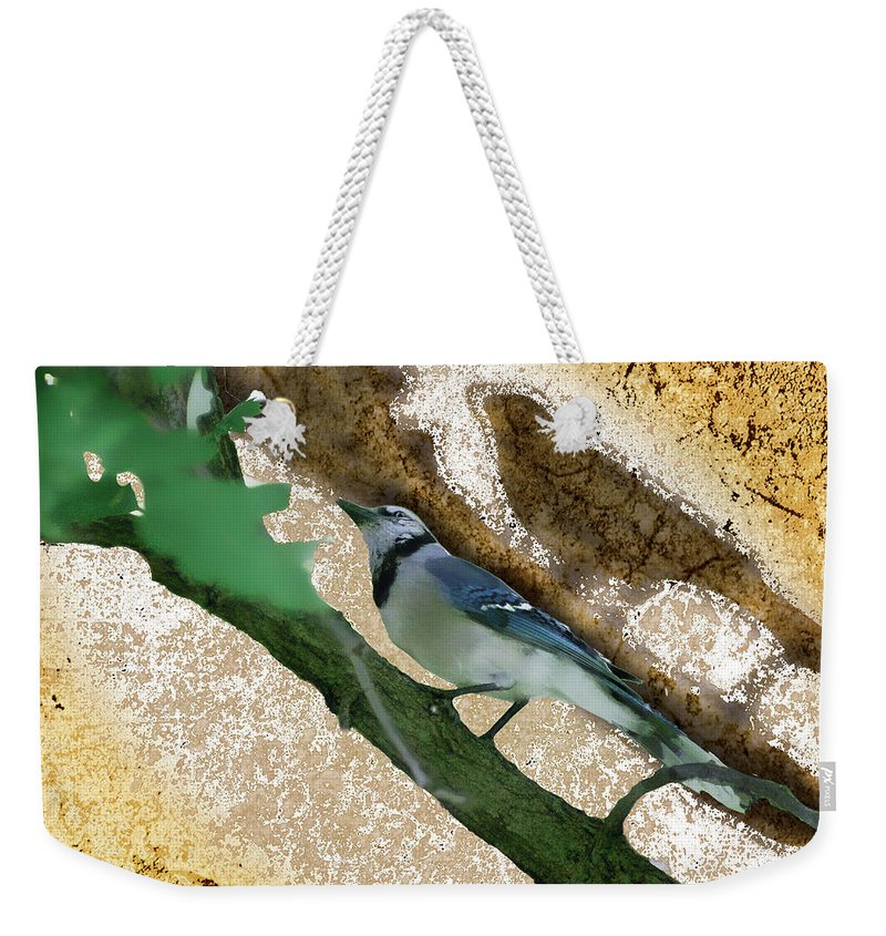 Bluejay Weekender Tote Bag featuring the photograph Blue Jay by Lawrence Golla