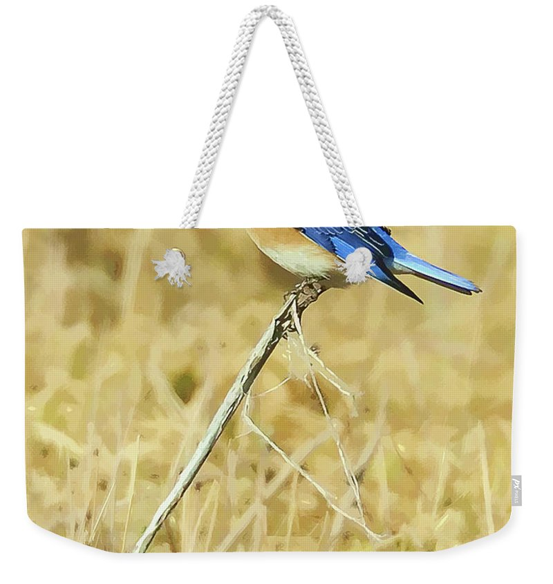 Bluebird Weekender Tote Bag featuring the photograph Bluebird In February by William Jobes