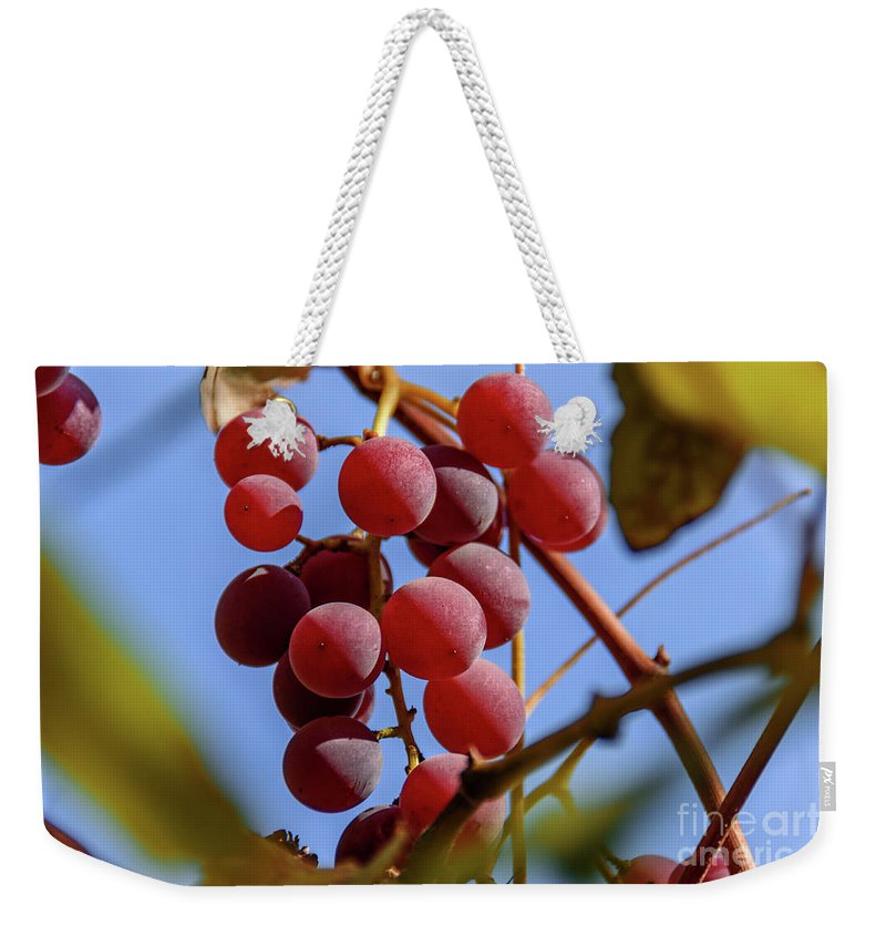 Bunch Weekender Tote Bag featuring the photograph Bunch Of Grapes by Viktor Birkus