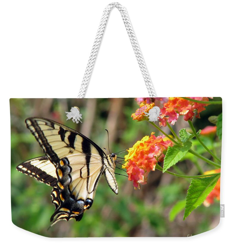 Butterfly Weekender Tote Bag featuring the photograph Butterfly by Amanda Barcon