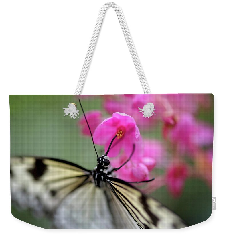 Weekender Tote Bag featuring the pyrography Butterfly Garden by Heather Fiedler