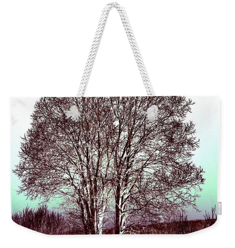 Finland Weekender Tote Bag featuring the photograph By The Lake by Jouko Lehto