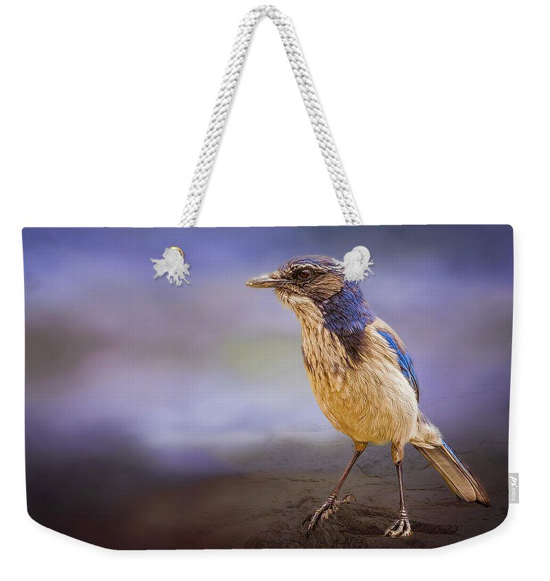 Animal Weekender Tote Bag featuring the photograph Blue Scrub Jay by Maria Coulson