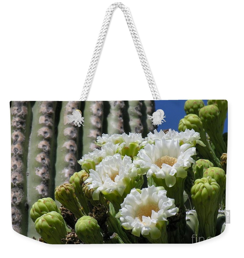 Cactus Weekender Tote Bag featuring the photograph Cactus Budding by Diane Greco-Lesser