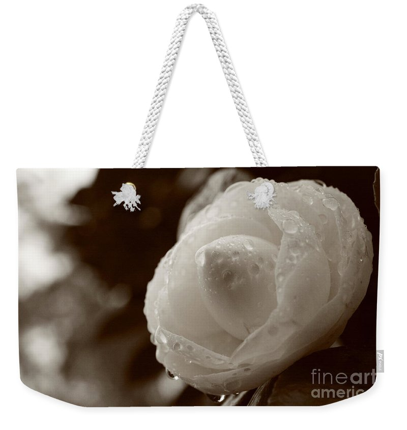 Bloom Weekender Tote Bag featuring the photograph Camellia Japonica by Gaspar Avila