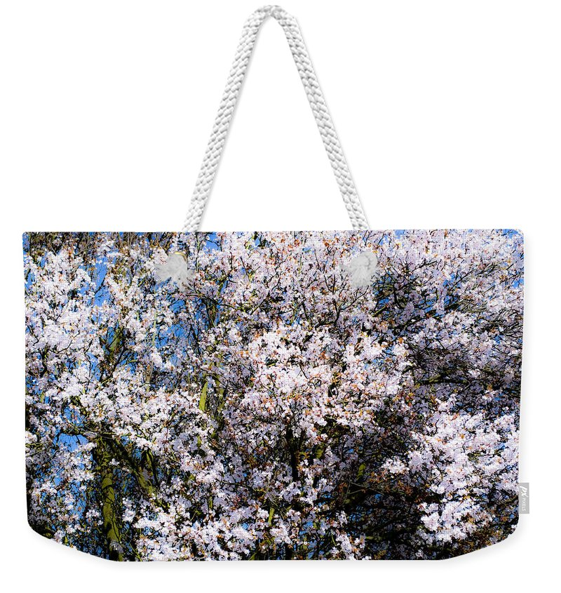 Flower Weekender Tote Bag featuring the photograph Cherry Blossom Tree by Svetlana Sewell