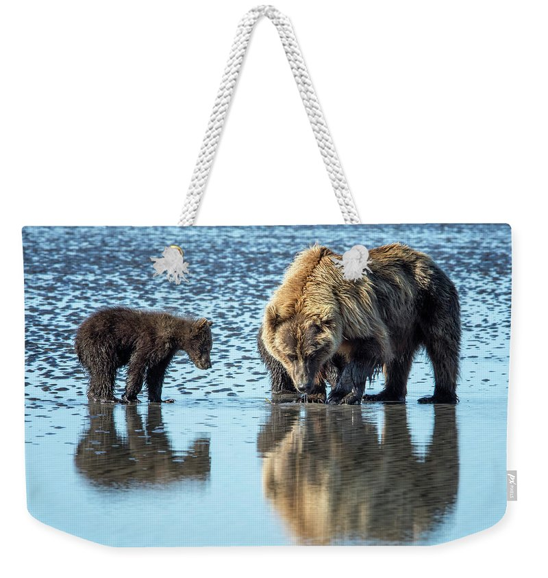 Grizzly Bear Weekender Tote Bag featuring the photograph Clamming by Claudia Kuhn