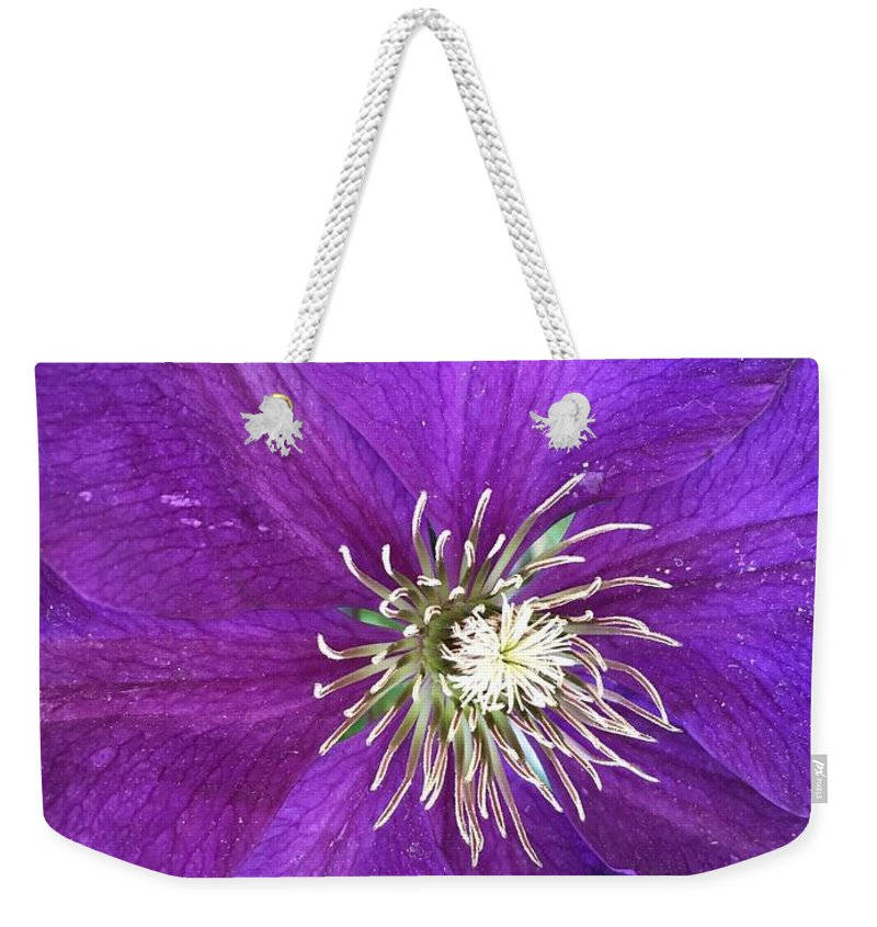 Clarity Weekender Tote Bag featuring the photograph Clarity by Shannon Grissom