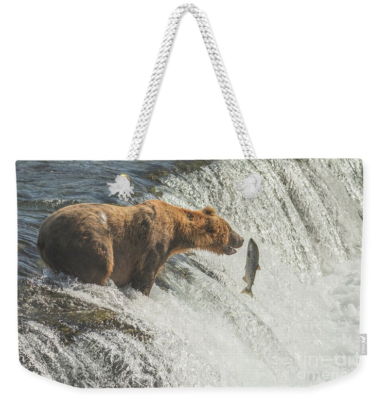 Bear Weekender Tote Bag featuring the photograph Close Encounter by Jim Chamberlain