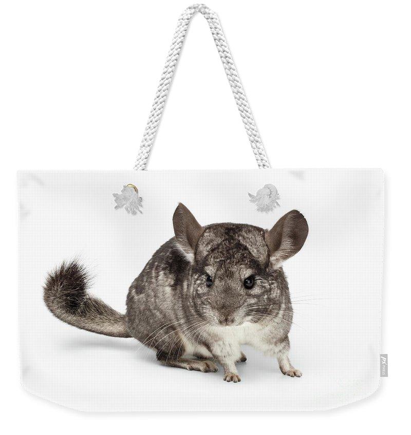 Chordata Weekender Tote Bags