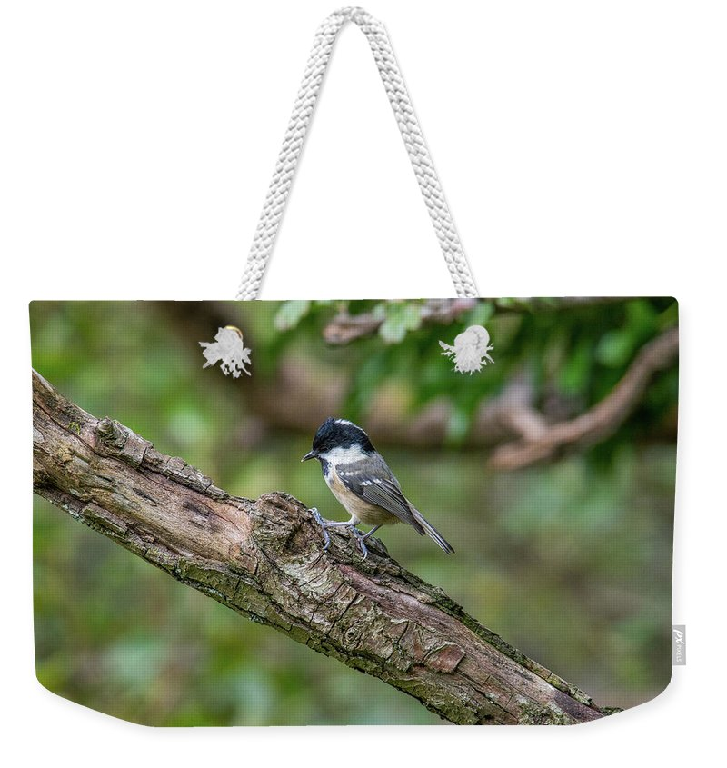 Coal Tit Weekender Tote Bag featuring the photograph Coal Tit by Stephen Jenkins