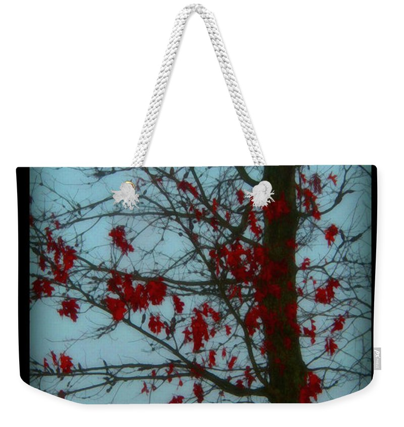 Tree Winter Nature Weekender Tote Bag featuring the photograph Cold Day In Winter by Linda Sannuti