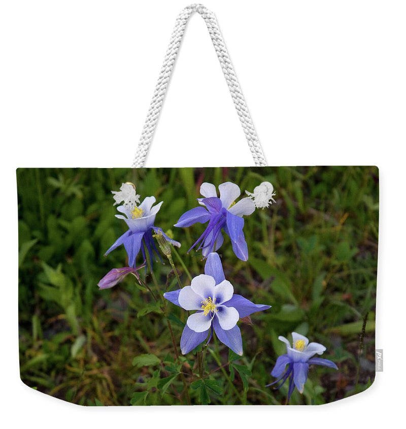 Colorado Weekender Tote Bag featuring the photograph Colorado Columbine by Steve Stuller
