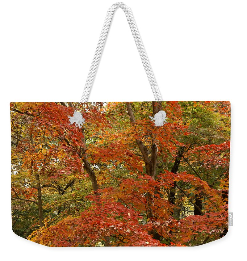 Autumn Weekender Tote Bag featuring the photograph Colors Of Autumn by Michele Burgess