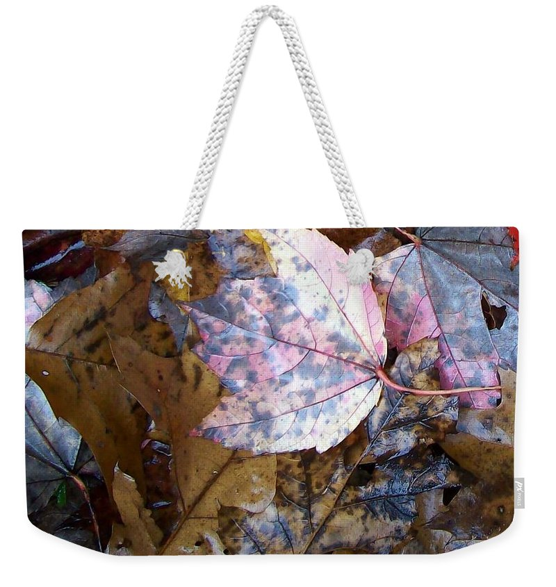 Fall Color Leaf Weekender Tote Bag featuring the photograph Colors Of The Fall by Wolfgang Schweizer