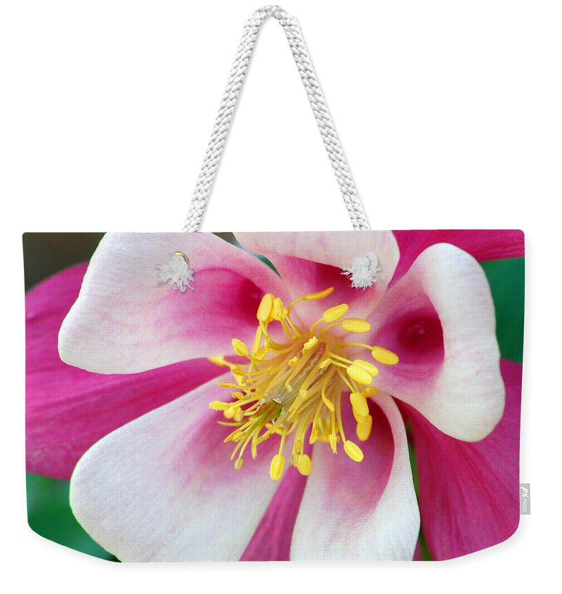 Columbine Weekender Tote Bag featuring the photograph Columbine Flower 1 by Amy Fose
