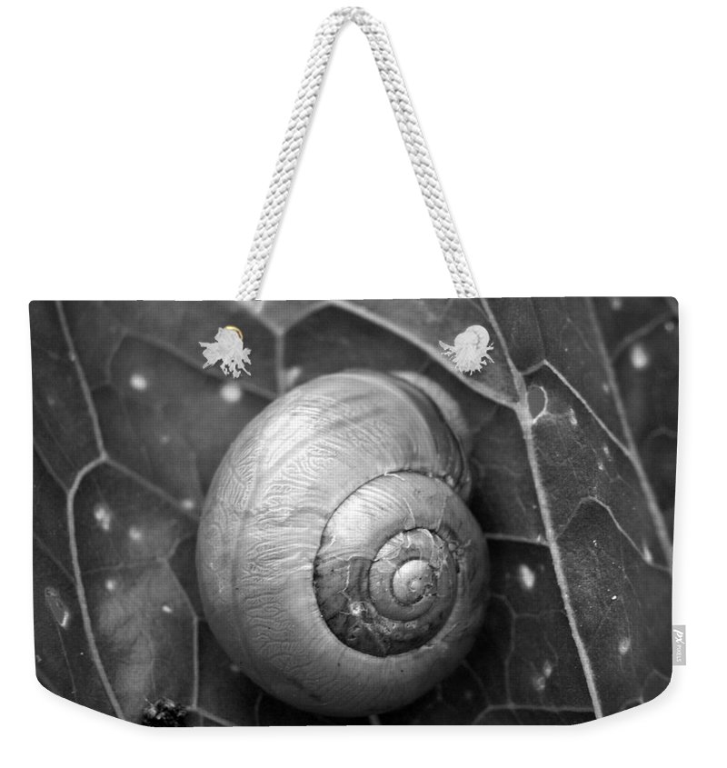 Lehtokukka Weekender Tote Bag featuring the photograph Conch by Jouko Lehto
