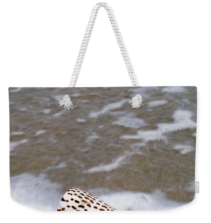 Shell Seashell Beach Ocean Bay Weekender Tote Bag featuring the photograph Cone Seashell On The Beach. by Anthony Totah