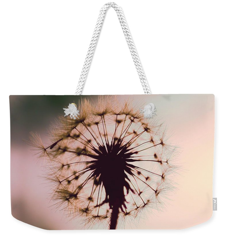 Dandelion Weekender Tote Bag featuring the photograph Dandelion Glow by Kay Brewer