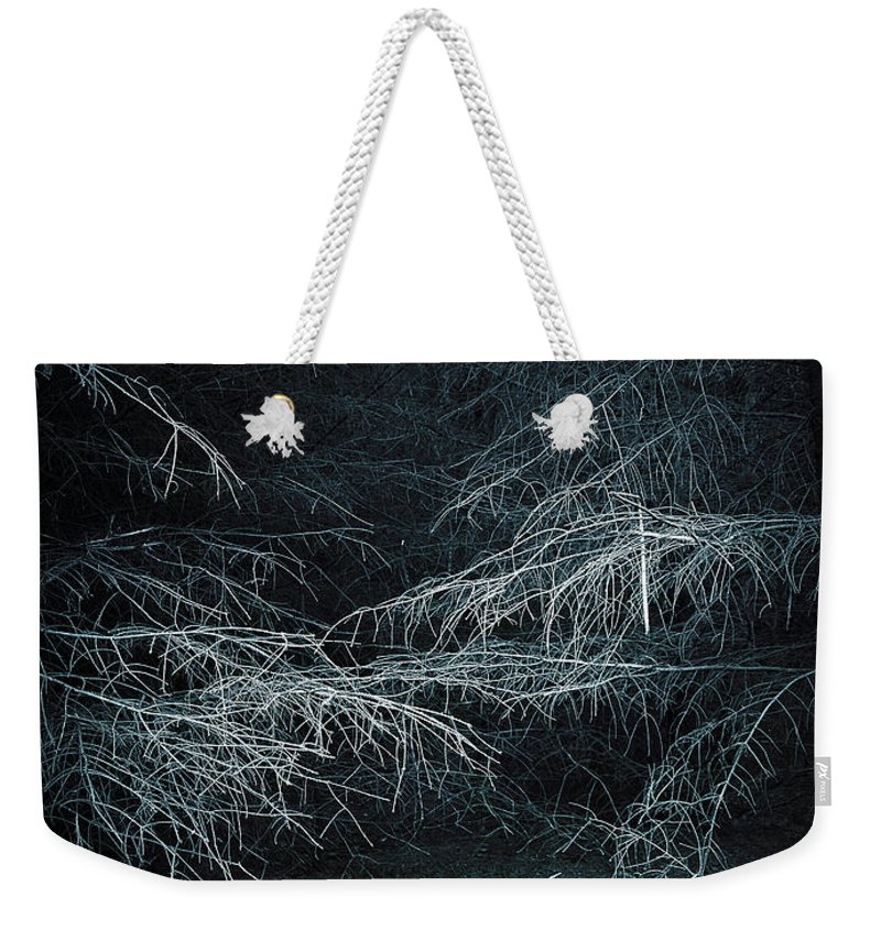 Birch Tree Weekender Tote Bag featuring the photograph Deep In Woods by Svetlana Sewell