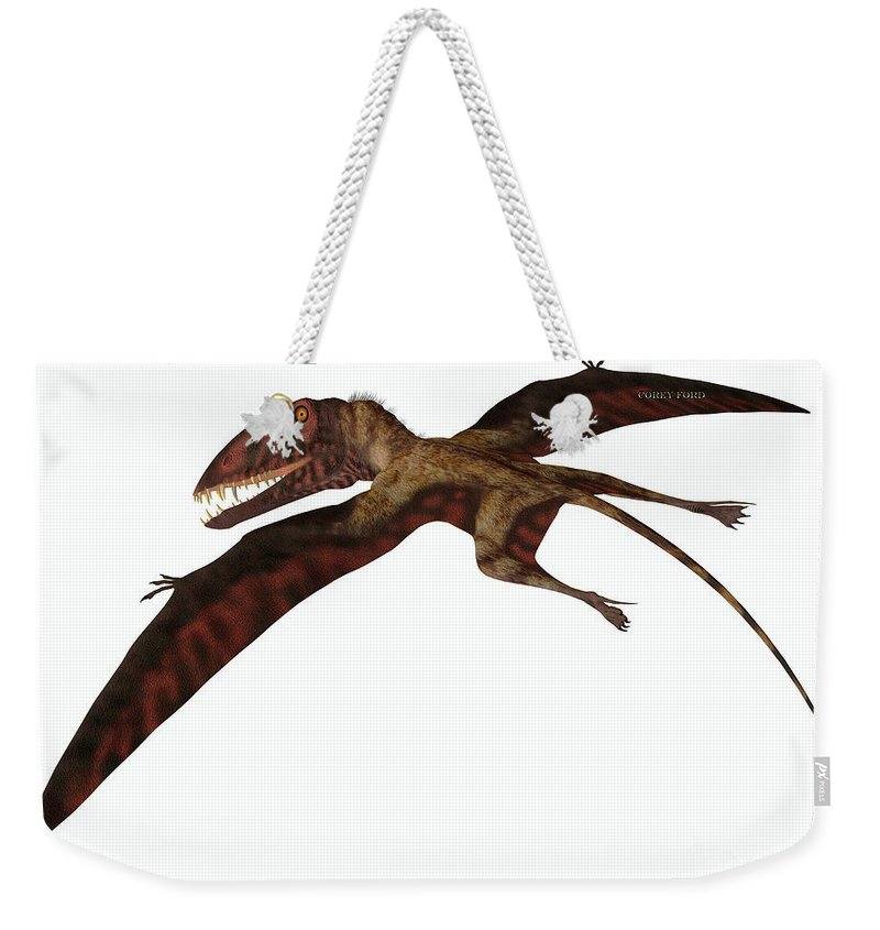 Dimorphodon Weekender Tote Bag featuring the painting Dimorphodon On White by Corey Ford