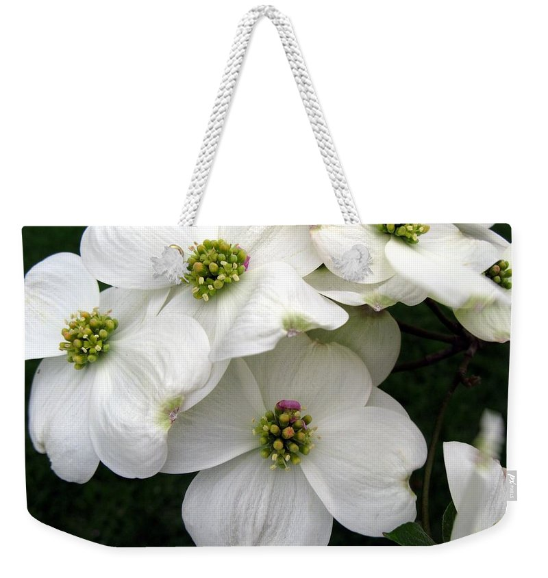 Dogwood Weekender Tote Bag featuring the photograph Dogwood Branch by Carol Sweetwood