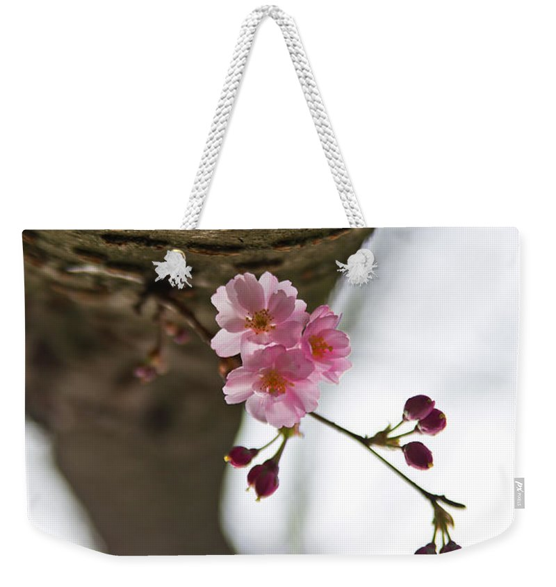 Flower Weekender Tote Bag featuring the photograph Dreaming by Alex Art and Photo