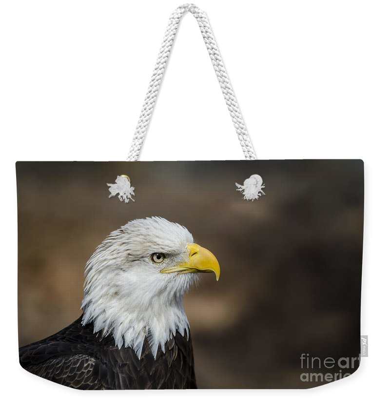 Bird Weekender Tote Bag featuring the photograph Eagle Profile by Andrea Silies