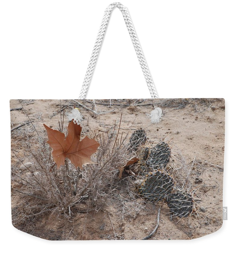 Desert Weekender Tote Bag featuring the photograph East Meets West by Rob Hans