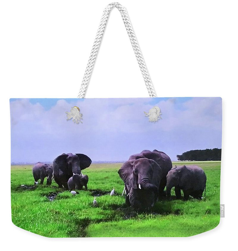 Weekender Tote Bag featuring the photograph Elephants by Miriam Marrero