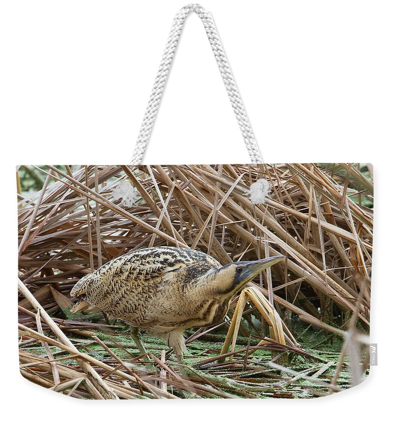 Bittern Weekender Tote Bag featuring the photograph European Bittern by Bob kemp