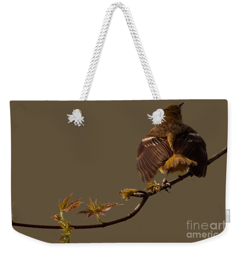 Finch Weekender Tote Bag featuring the photograph Finch by Gaby Swanson