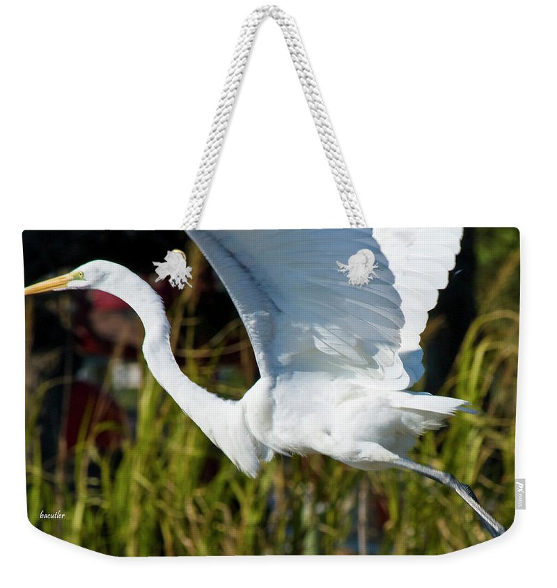 Wildlife Weekender Tote Bag featuring the photograph Flight by Betsy Knapp