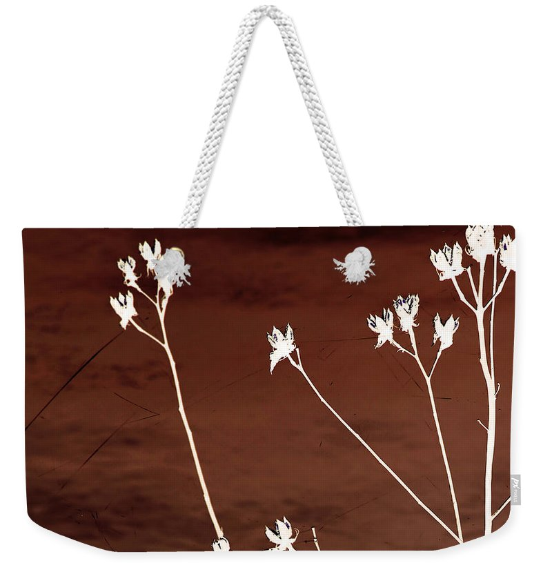 Flowers Weekender Tote Bag featuring the photograph Floral by Amanda Barcon