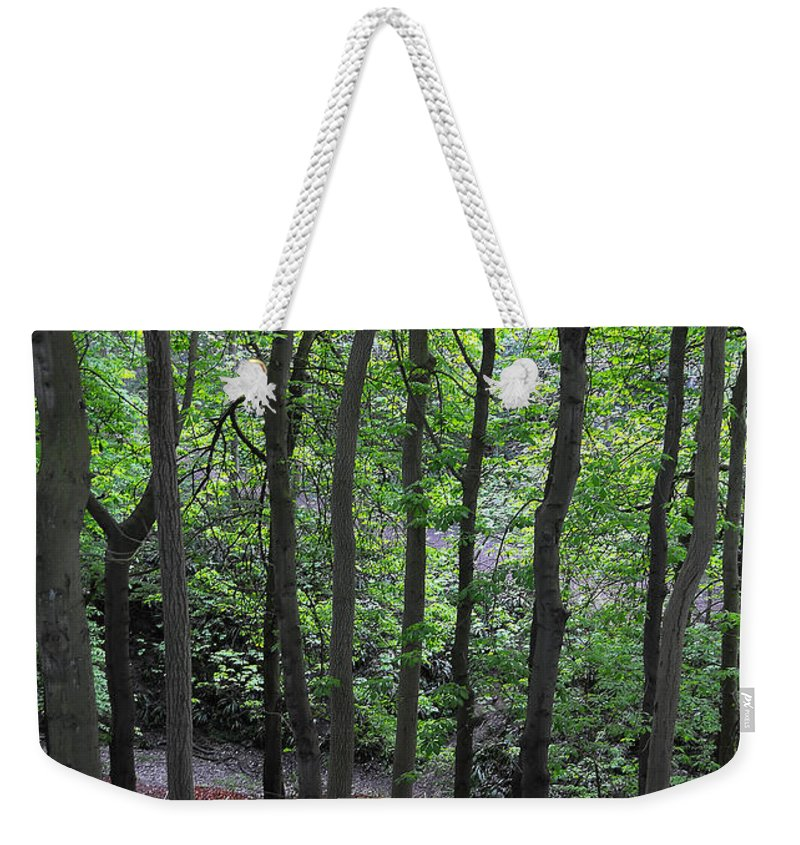 Branches Weekender Tote Bag featuring the photograph Forest by Svetlana Sewell