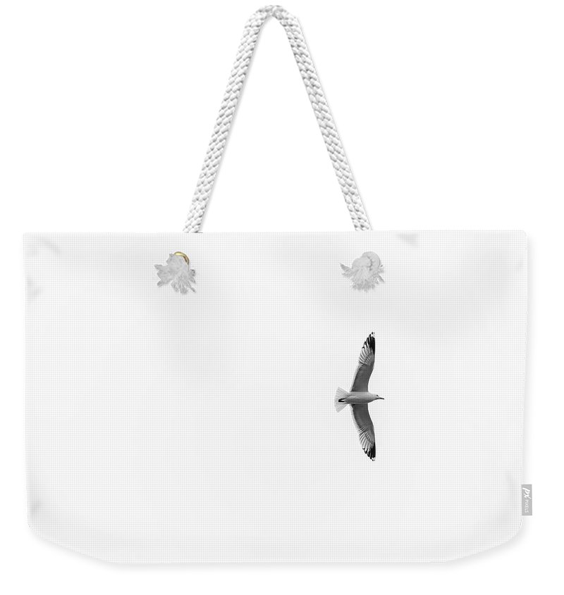 Seagull Weekender Tote Bag featuring the photograph Freedom In The Sky by Konstantin Khanov